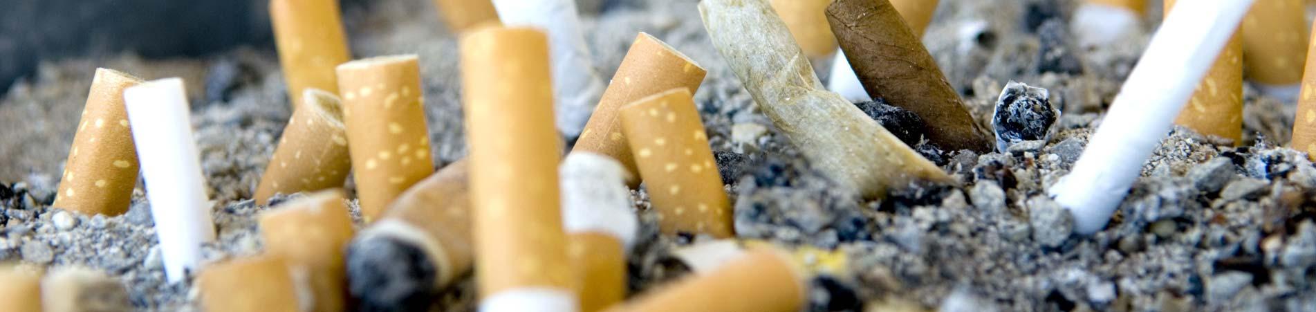 Biologische Geruchsvernichtung in Raucherwohnungen